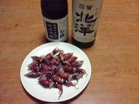 Hotaruika1